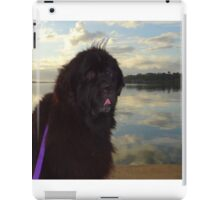 Newfoundland Dog Waterscape iPad Case/Skin