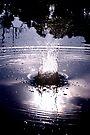 Moonlight Sonata by Wendy  Slee