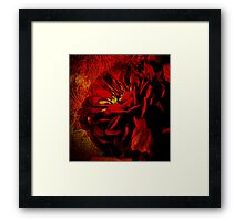 Scarlet Ribbon Framed Print