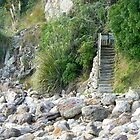 Beach Stairs by mrbean