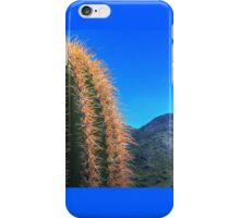 Saguaro Top and Mountain iPhone Case/Skin