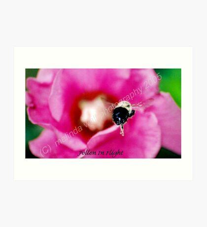 Pollen in flight... Art Print