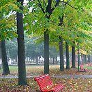 Red Bench by kuntaldaftary