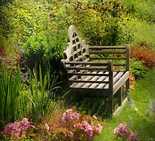 The Humble Park Bench by Mike  Savad