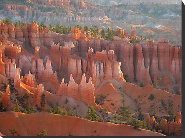 Bryce Canyon morning glory by loiteke