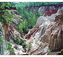 Providence Canyon by Braedene