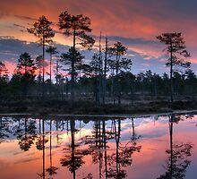 Moment before the sunrise by Petri Volanen