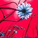 Red Dream Flowers by vampyba