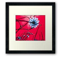 Red Dream Flowers Framed Print