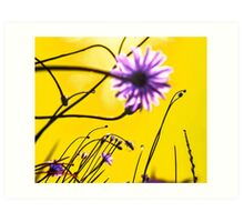 Yellow Dream Flowers Art Print