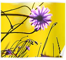 Yellow Dream Flowers Poster