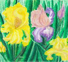 Iris - oil pastels by Gordon Pegler