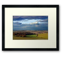 Forest of Bere Framed Print