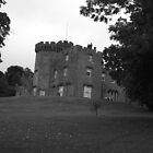 Balloch Castle by David Fulton