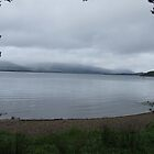 Rain over Loch Lomond by David Fulton