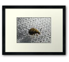 ©NS Laundry Day For Beetle IIA. Framed Print