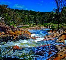 Dodgie River Crossing by Peter Evans