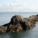 Submarine Rock by Iani