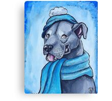 Pit Bull 1 Canvas Print