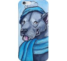 Pit Bull 1 iPhone Case/Skin