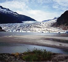 Mendenhall Glacier, Alaska by Laurie Puglia