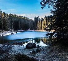 Carezza lake in winter with frosty surface  by enolabrain