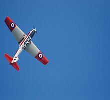 Flying High by Max Karen