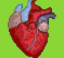 16-Bit Troubles for an 8-Bit Heart by Rachel Mansell