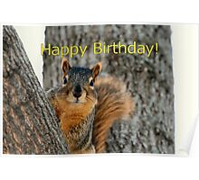 Happy Birthday Squirrel Wishes Poster