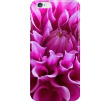 Dahlia C5  iPhone Case/Skin