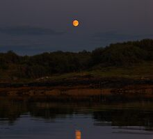 Harvest Moon by Alisdair Gurney
