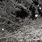 Snowflake sprinkle by goddessteri211