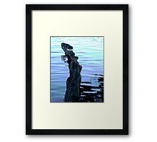 Reflections and waves Framed Print