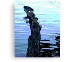 Reflections and waves Canvas Print