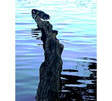 Reflections and waves Photographic Print