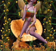 Mushroom Fairy Collaboration with Dougie1 by EnchantedDreams