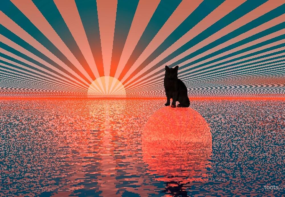 Sundown Cat by toots