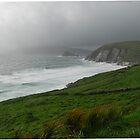 Ireland Coast by Janet Houlihan