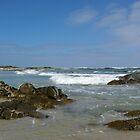 Wild West Coast by Rhana Griffin
