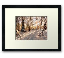 GOLDEN WINTER MORN 1 Framed Print