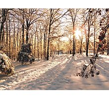GOLDEN WINTER MORN 1 Photographic Print