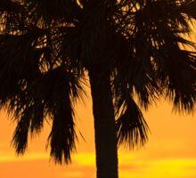 Sunset Palm Tree Sticker