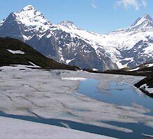 Bachalpensee with Fiescherhornen in the background, Switzerland by Laurie Puglia