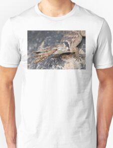 Crevice Lizard vs Grasshopper Unisex T-Shirt