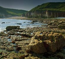 Thornwick Bay by Andrew Leighton