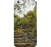 STONE STEPS iPhone Case/Skin