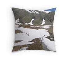 Hiking in Switzerland Throw Pillow