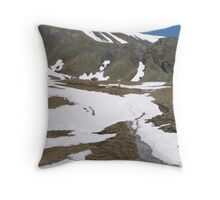 Hiking in Switzerland Throw Pillow