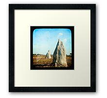 Termite Homes Framed Print