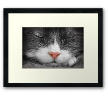 Color my black and white dreams Framed Print
